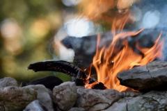 Feuerast