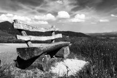 Holzbank auf Wiese