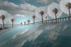 Himmel mit Loewenzahn Strasse